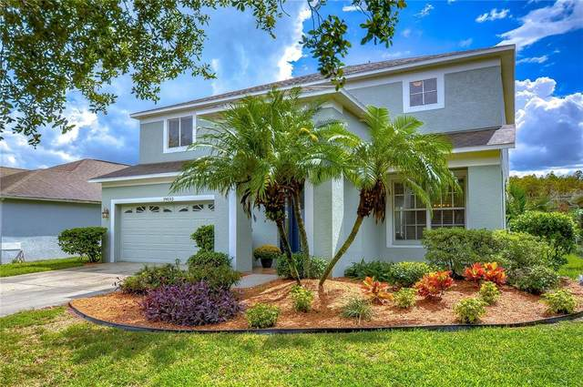 19032 Fishermans Bend Drive, Lutz, FL 33558 (MLS #T3331710) :: Kelli and Audrey at RE/MAX Tropical Sands