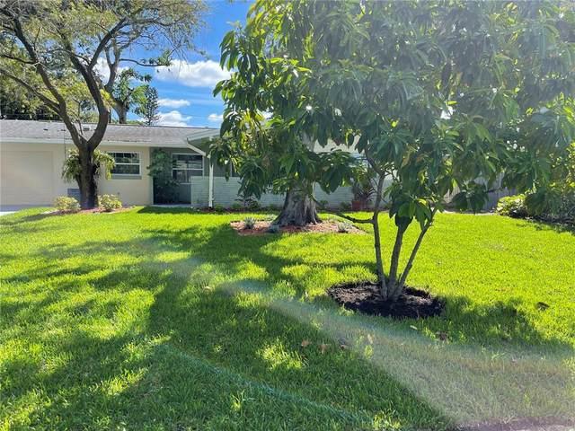1517 Lakeside Drive, Dunedin, FL 34698 (MLS #T3331775) :: Cartwright Realty