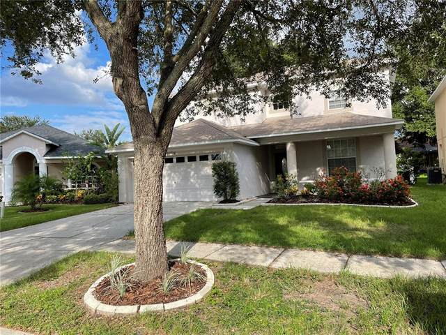 11714 Pure Pebble Drive, Riverview, FL 33569 (MLS #T3331786) :: Zarghami Group