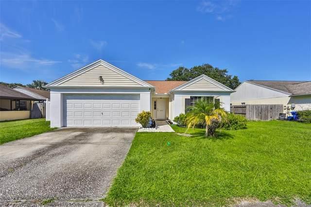 Tampa, FL 33637 :: Sarasota Home Specialists