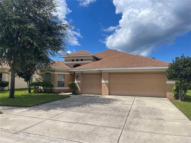 8607 Creedmoor Lane, New Port Richey, FL 34654 (MLS #T3331807) :: Armel Real Estate