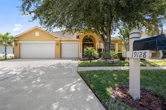 19128 Wind Dancer Street, Lutz, FL 33558 (MLS #T3331811) :: Team Bohannon