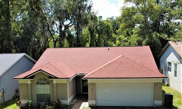 7420 Becky Thatcher Lane, Tampa, FL 33637 (MLS #T3331814) :: Pepine Realty