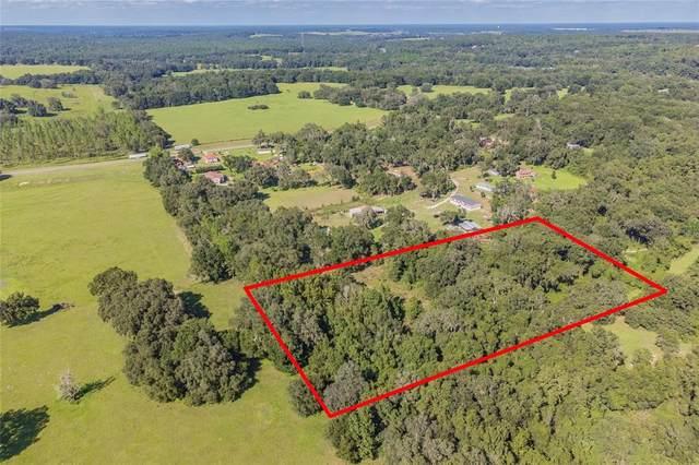 975 Cedar Tree Drive, Brooksville, FL 34602 (MLS #T3331815) :: Gate Arty & the Group - Keller Williams Realty Smart