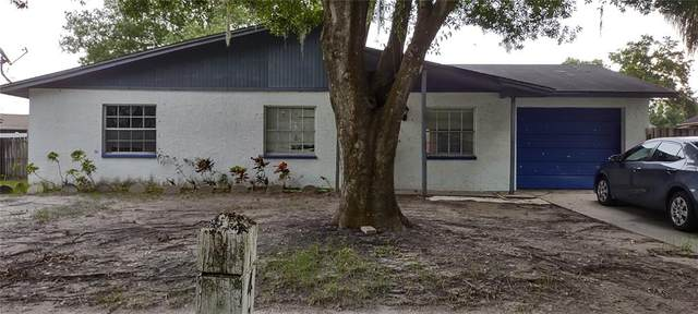 6410 Moss Way, Tampa, FL 33625 (MLS #T3331824) :: Pepine Realty