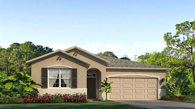 7920 Wheat Stone Drive, Zephyrhills, FL 33540 (MLS #T3331834) :: The Home Solutions Team | Keller Williams Realty New Tampa