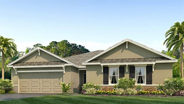 11 Hickory Course Radial, Ocala, FL 34472 (MLS #T3331875) :: The Hustle and Heart Group