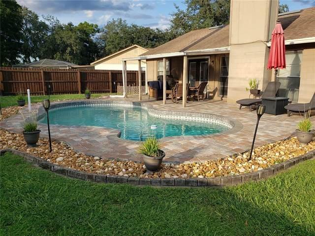 4103 Spring Way Circle, Valrico, FL 33596 (MLS #T3331889) :: Zarghami Group
