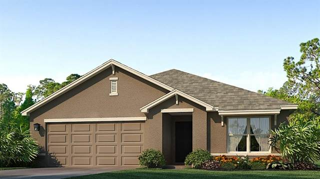 3912 Silver Strand Trail, Palmetto, FL 34221 (MLS #T3331892) :: SunCoast Home Experts