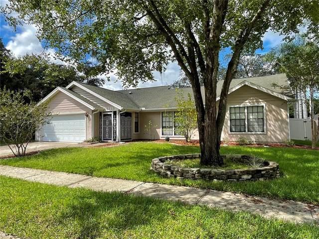 5713 Redhawk Drive, New Port Richey, FL 34655 (MLS #T3331893) :: Zarghami Group