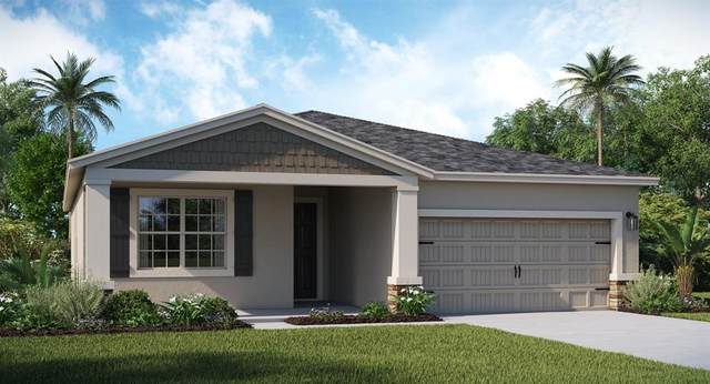 1255 Lassen Street, Davenport, FL 33837 (MLS #T3331924) :: Premium Properties Real Estate Services