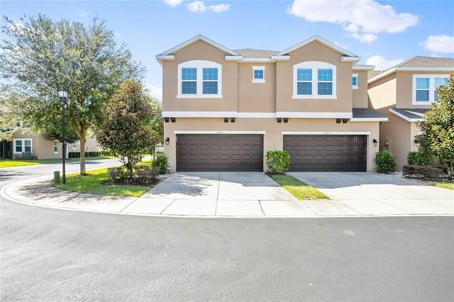 10733 Avery Park Drive, Riverview, FL 33578 (MLS #T3331937) :: Zarghami Group