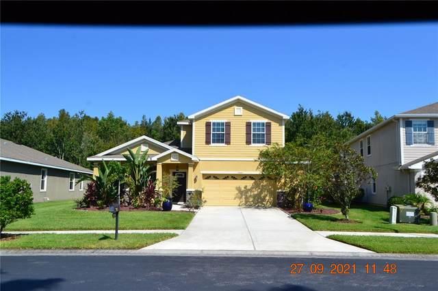 27645 Stonecreek Way, Wesley Chapel, FL 33544 (MLS #T3331946) :: Zarghami Group