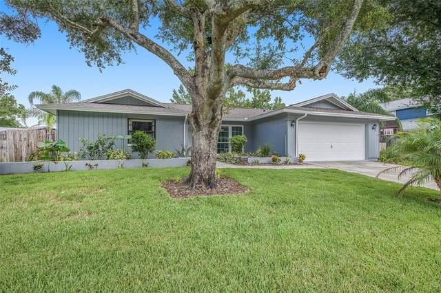 4213 Windtree Drive, Tampa, FL 33624 (MLS #T3331964) :: Zarghami Group