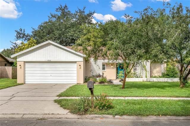 17810 Cranbrook Drive, Lutz, FL 33549 (MLS #T3332010) :: Griffin Group
