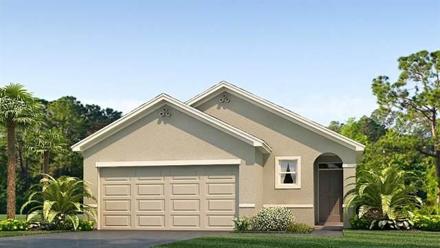 16921 Trite Bend Street, Wimauma, FL 33598 (MLS #T3332014) :: The Nathan Bangs Group