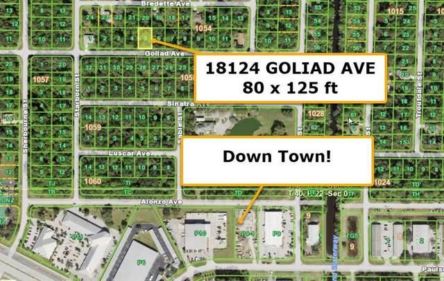 18124 Goliad Avenue, Port Charlotte, FL 33954 (MLS #T3332036) :: Medway Realty