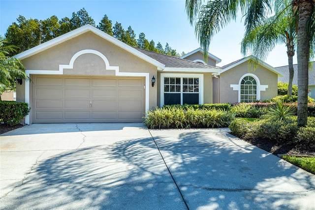 18913 Maisons Drive, Lutz, FL 33558 (MLS #T3332055) :: Zarghami Group