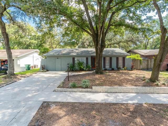 9627 Hidden Oaks Circle, Tampa, FL 33612 (MLS #T3332059) :: The Truluck TEAM