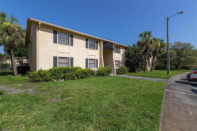 7523 Dolonita Drive, Tampa, FL 33615 (MLS #T3332072) :: Zarghami Group