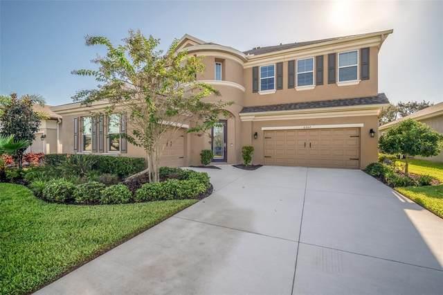 6307 Brevada Lane, Apollo Beach, FL 33572 (MLS #T3332167) :: Frankenstein Home Team
