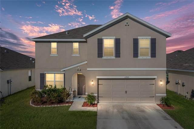 11905 Ledbury Commons Drive, Gibsonton, FL 33534 (MLS #T3332264) :: McConnell and Associates