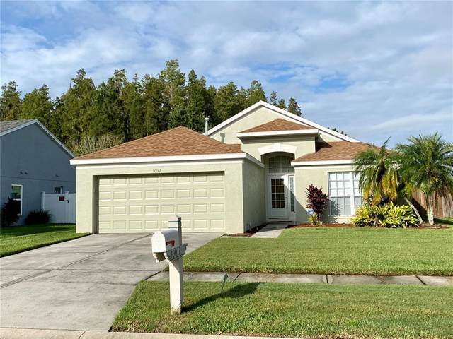 30012 Morningmist Drive, Wesley Chapel, FL 33543 (MLS #T3332278) :: Zarghami Group