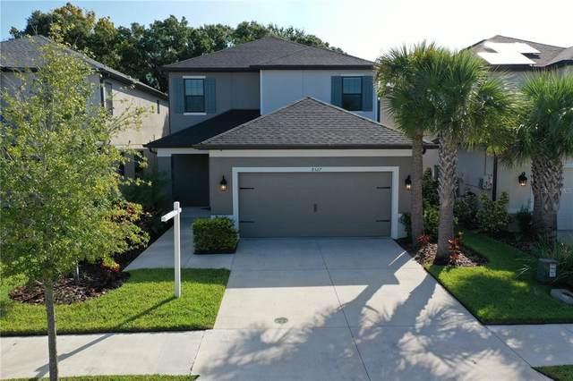 8527 Arabella Lane, Seminole, FL 33777 (MLS #T3332283) :: Bustamante Real Estate