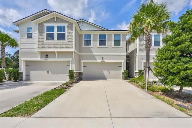 14206 Pondhawk Lane, Tampa, FL 33625 (MLS #T3332389) :: Delgado Home Team at Keller Williams