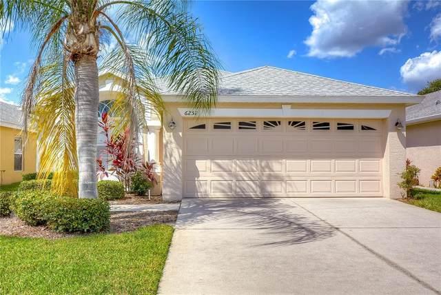 6251 Gentle Ben Circle, Wesley Chapel, FL 33544 (MLS #T3332396) :: Everlane Realty