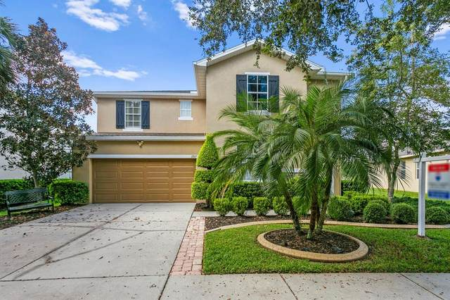2927 Winglewood Circle, Lutz, FL 33558 (MLS #T3332453) :: Griffin Group