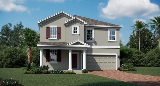 1148 Dora Parc Lane, Mount Dora, FL 32757 (MLS #T3332479) :: Bustamante Real Estate