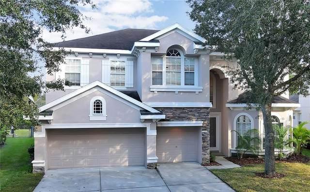 17803 Arbor Creek Drive, Tampa, FL 33647 (MLS #T3332577) :: Cartwright Realty