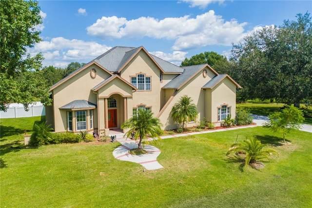 8935 Woodleaf Boulevard, Wesley Chapel, FL 33544 (MLS #T3332653) :: Blue Chip International Realty