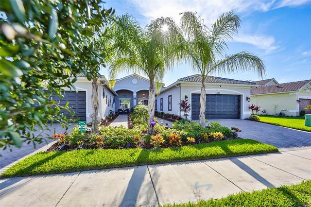 4913 Avila Lakes Drive, Wimauma, FL 33598 (MLS #T3332703) :: McConnell and Associates