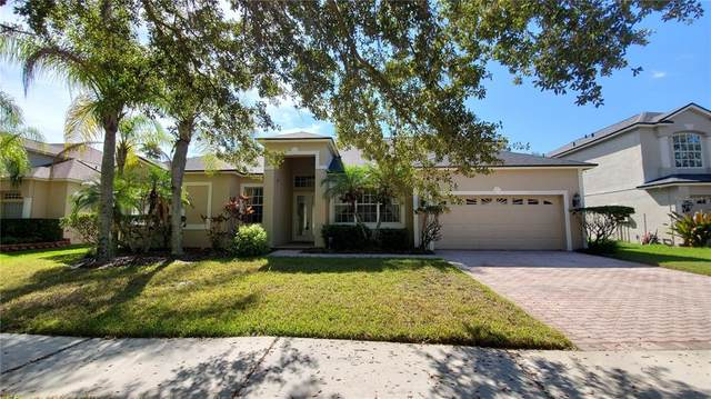 16323 Ashington Park Drive, Tampa, FL 33647 (MLS #T3332845) :: Rabell Realty Group