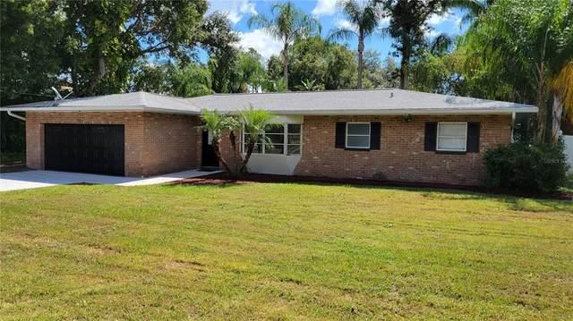 707 Lafayette Boulevard, Oldsmar, FL 34677 (#T3332940) :: Caine Luxury Team