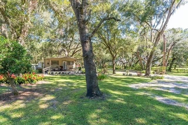 7201 Charles Humphrey Road, Plant City, FL 33565 (MLS #T3332974) :: Everlane Realty