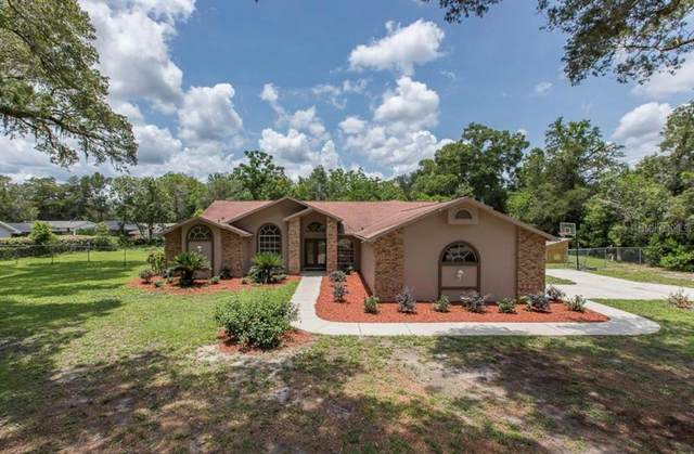 495 Lincoln Avenue, Spring Hill, FL 34604 (MLS #T3333005) :: Everlane Realty