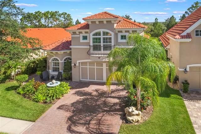 14612 Mirasol Manor Court, Tampa, FL 33626 (MLS #T3333046) :: Griffin Group