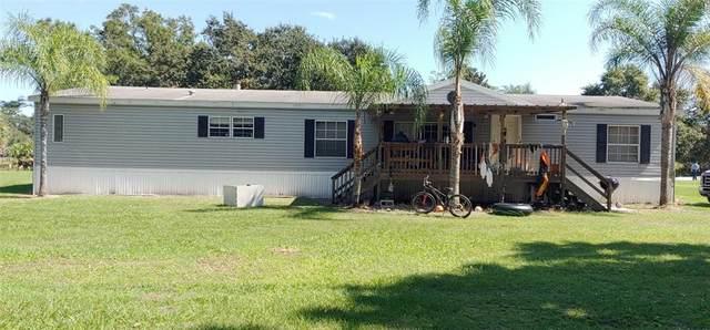 18807 Boyette Road, Lithia, FL 33547 (MLS #T3333062) :: Charles Rutenberg Realty