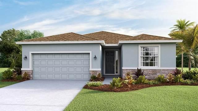 5340 Grove Mill Loop, Bradenton, FL 34211 (MLS #T3333194) :: SunCoast Home Experts