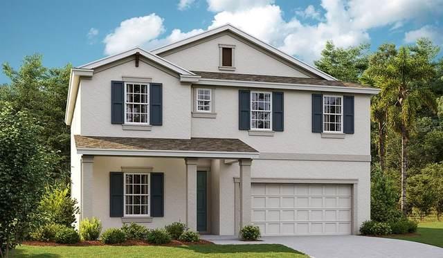 5456 Del Coronado Drive, Apollo Beach, FL 33572 (MLS #T3333264) :: Frankenstein Home Team