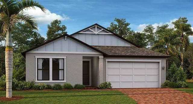 21685 Violet Periwinkle Drive, Land O Lakes, FL 34637 (MLS #T3333271) :: Orlando Homes Finder Team