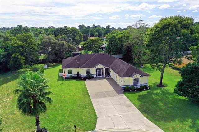 11356 Silverwood Court, Spring Hill, FL 34609 (MLS #T3333317) :: Orlando Homes Finder Team