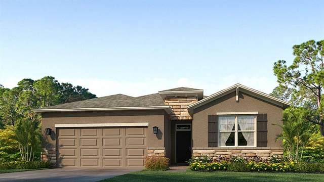 7866 Wheat Stone Drive, Zephyrhills, FL 33540 (MLS #T3333330) :: Bustamante Real Estate