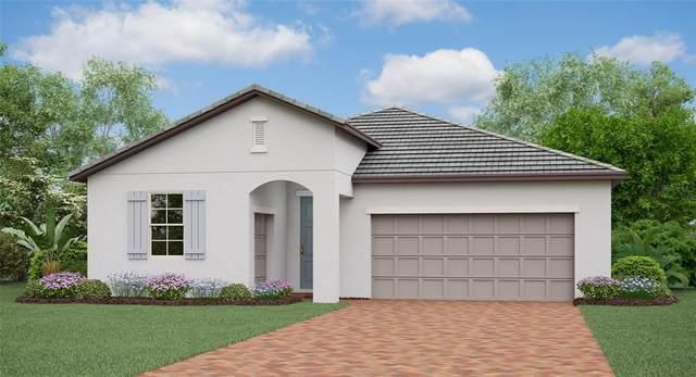 17404 SE 123RD Terrace, Summerfield, FL 34491 (MLS #T3333332) :: The Nathan Bangs Group