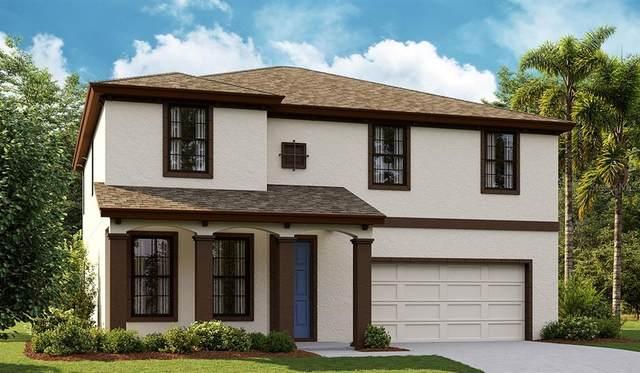 5454 Del Coronado Drive, Apollo Beach, FL 33572 (MLS #T3333483) :: Frankenstein Home Team