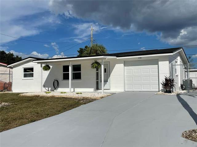 1132 Clairborne Street, Holiday, FL 34690 (MLS #T3333488) :: Keller Williams Realty Select