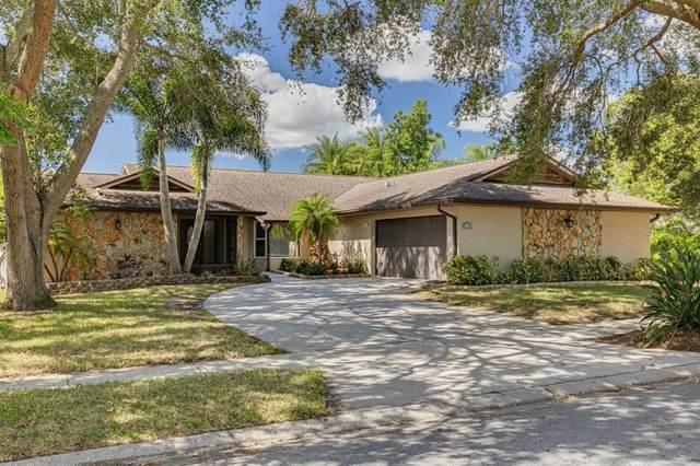 3460 Snowy Egret Court, Palm Harbor, FL 34683 (MLS #T3333587) :: Sarasota Gulf Coast Homes